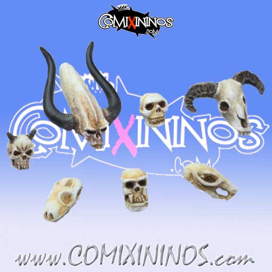 Set of Seven Skull Heads - Tabletop Arts
