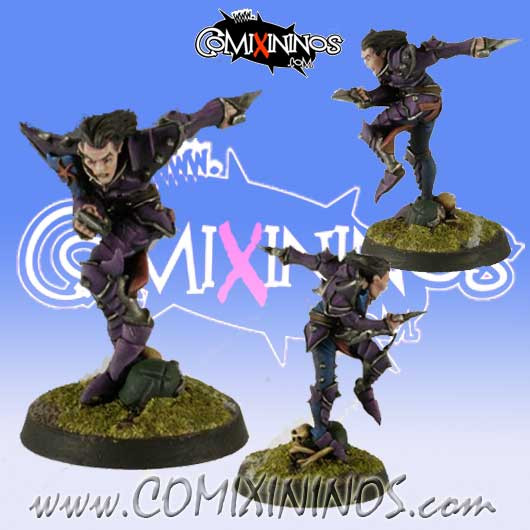 Dark Elves - Dark Elf Blitzer Star Player - Willy Miniatures