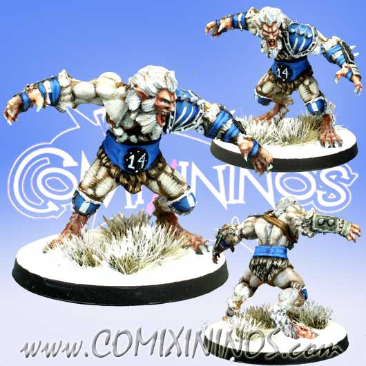 Norses - Norse Ulfwerner nº 1 - Meiko Miniatures