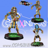 Egyptian Tomb kings - Skeleton Thro-Ra nº 1 - Willy Miniatures