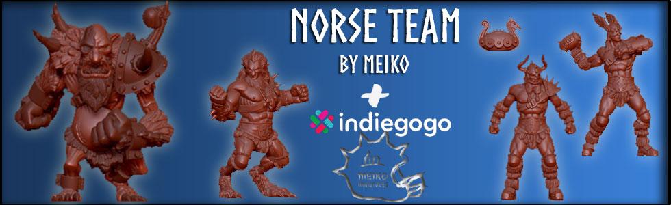 Meiko Norse Team Indiegogo Campaign