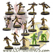 Amazons - Amazon Team of 14 Players - SP Miniaturas