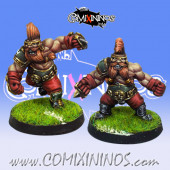 Dwarves - Set of 2 Troll Slayers  – Willy Miniatures