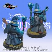 Dwarves - Gandwalf Dwarf Wizard - Goblin Guild