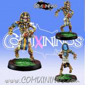 Egyptian Tomb kings - Skeleton Thro-Ra nº 1 - Willy Miniatures