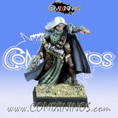 High Elves / Elves - Elquin High Elf Adventurer - Reaper