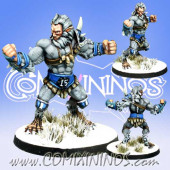 Norses - Norse Ulfwerner nº 2 - Meiko Miniatures