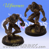 Norses - Set of 2 Spartan Ulfwerners - Meiko Miniatures
