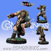Norses - Ulfwerner nº 2  - Willy Miniatures